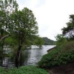 Waterbird sanctuary