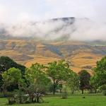 Drakensbergen, 1 700 meter över havet
