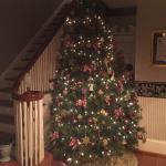 Fantastic Christmas decor