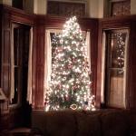 Christmas preperations