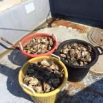 Fresh Delaware Bay Oysters caught by JP's seamen