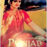 Couverture du menu du Punjab