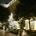 Hotel Le Bristol - Gardens with Christmas Tree
