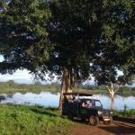 Safari at Udawalawe