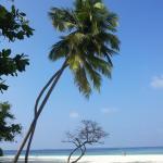 tipica spiaggia maldiviana