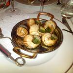 Gros Escargots de Bourgogne