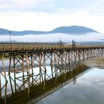 Salmon Arm dock.