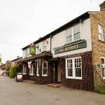 The Beehive in Bedfont