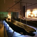 Sala delle barche ritrovate, a piano terreno del Museo Archeologico di Ferrara