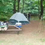 spacious tent sites right on the river