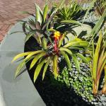 Planter at lobby front entrance