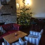 Xmas tree in the bar area