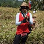 Ketut showing us a sheaf of paddy