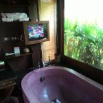 Bathroom with tv