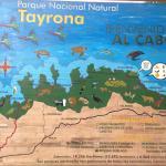 Tracks through Tayrona