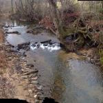 Little tesnatee creek from cabin 1 deck.
