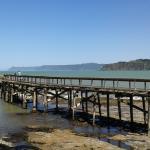 Hicks Bay Wharf