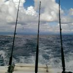fishing for billfish