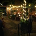 Garden patio dining a bit away from the hustle and bustle. Sayulita's street action is exuberant
