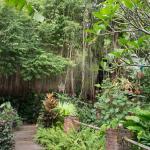 Lao Lao Garden - nice