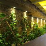 """un coté du mur de """"vraies plantes"""""""