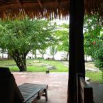 La vue depuis la salle de restaurant