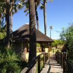 Palmwag Lodge - Elephant Walk