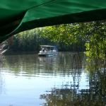 Boat ride on the Black River Safari