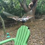 I could hardly get my husband out of the hammock