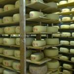 Foto de Matos Cheese Factory