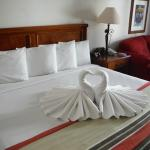 King sized bed with swans