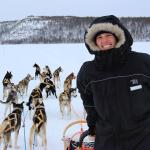 We offer dog sledge tours to our guest all winter