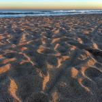 playa de Valeria del Mar, minutos antes del atardecer.