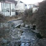 橋からの鬼怒川の渓谷と温泉街の眺めが良いです