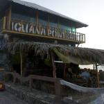 Iguana Point Bar on Isabela Island