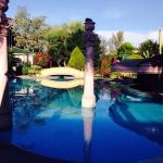 Pool in der Früh