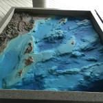 Ocean floor.
