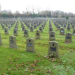 Belgian veterans graves