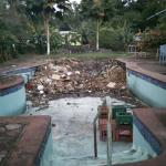 Pool used as garbage disposal & is home of tons of mosquitos