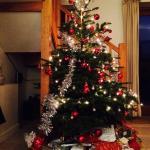 Lovely tree provided