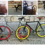 To fixies lovers we have all sizes