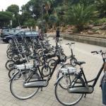 Amplia flota de bicis eléctricas para grupos de cualquier tamaño