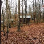 Abe Martin Family Cabin Area