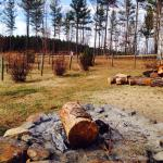 Cozy fire pit on the property.