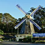 Bild från Big Windmill restaurant