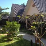 Standard bungalows