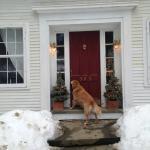 Huck at the front door. Let me in!