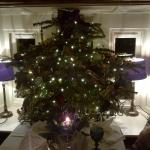 window christmas tree