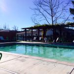 Pool area, which is spacious and beautifully maintained.