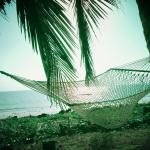 second home: paradise's lovely hammocks